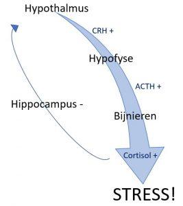 stress as